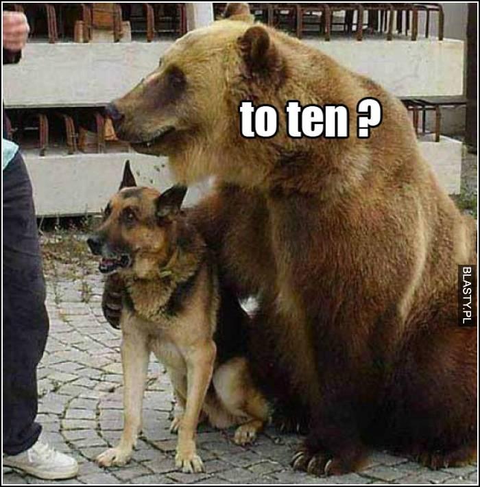to ten?