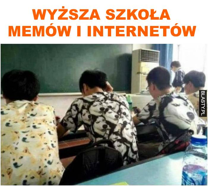 wyższa szkoła memów i internetów