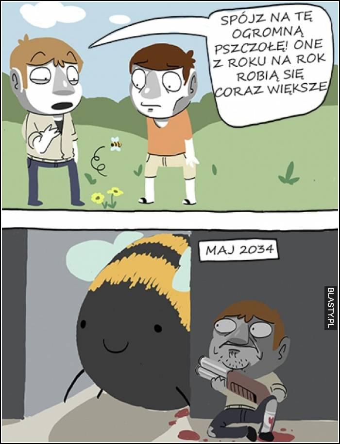 duża pszczoła