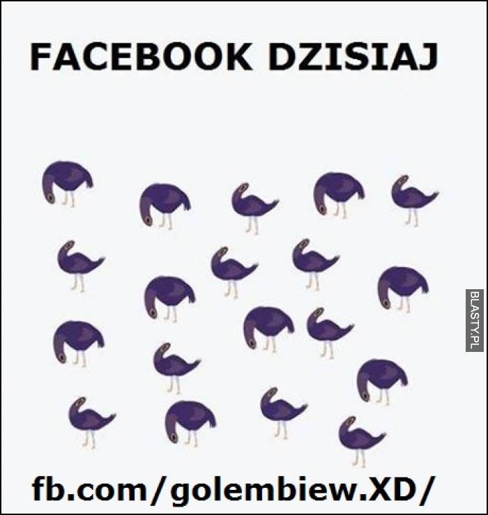 Facebook dzisiaj
