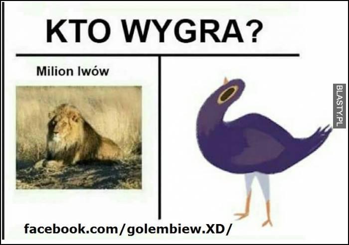 gołembiew vs lew