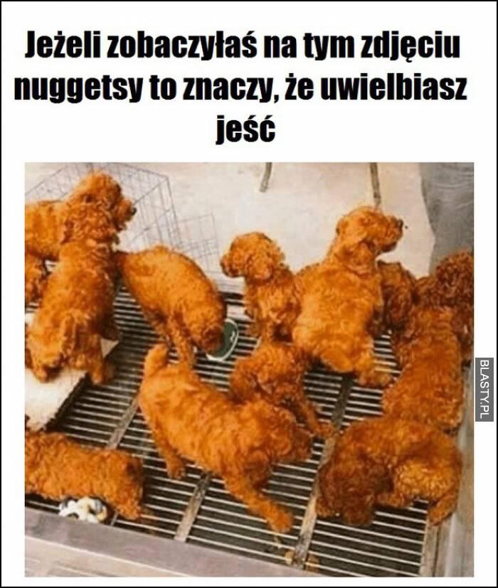 jeśli zobaczyłeś na tym zdjęciu nuggetsy