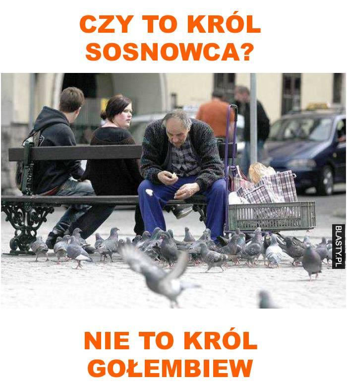 król gołębiew