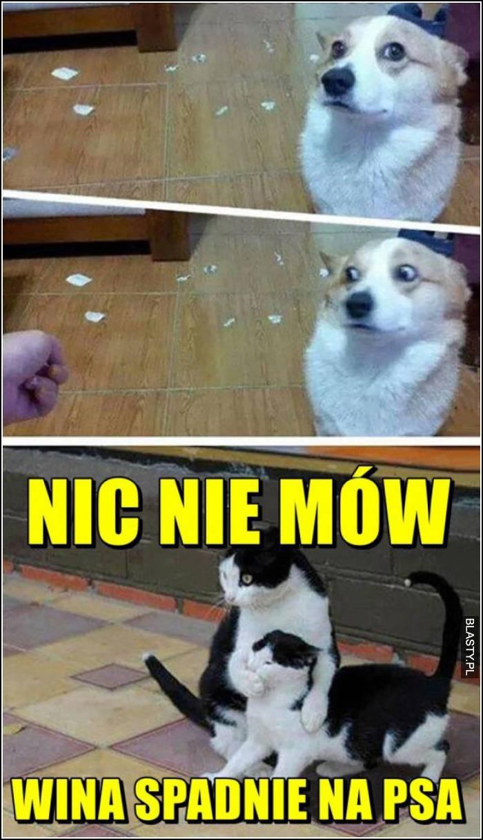 20 Memów Jak Pies Z Kotem Najlepsze śmieszne Memy I Demotywatory
