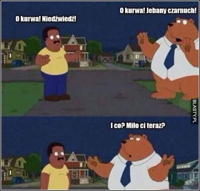 o kurwa niedźwiedź