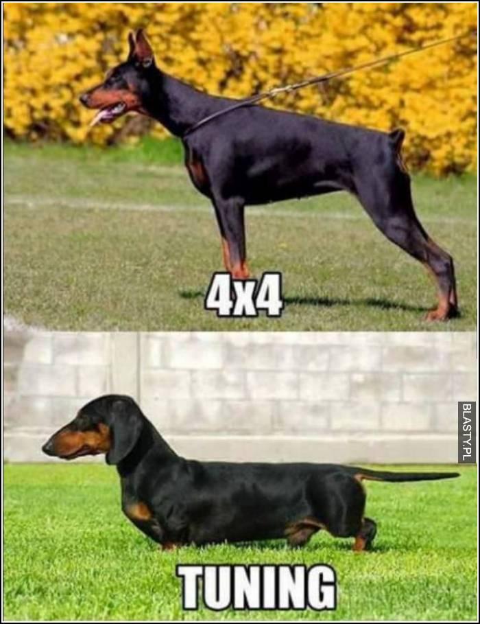 4x4 vs tunning