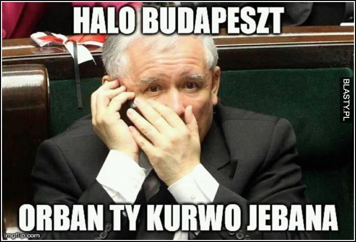 Halo Budapeszt