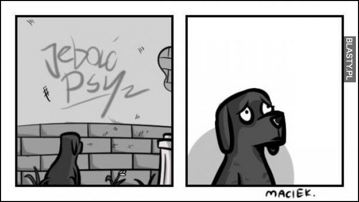 Jebać psy
