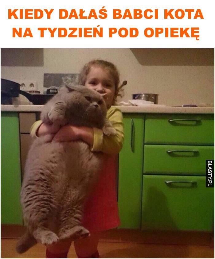 kiedy dałaś babci kota na tydzień pod opiekę