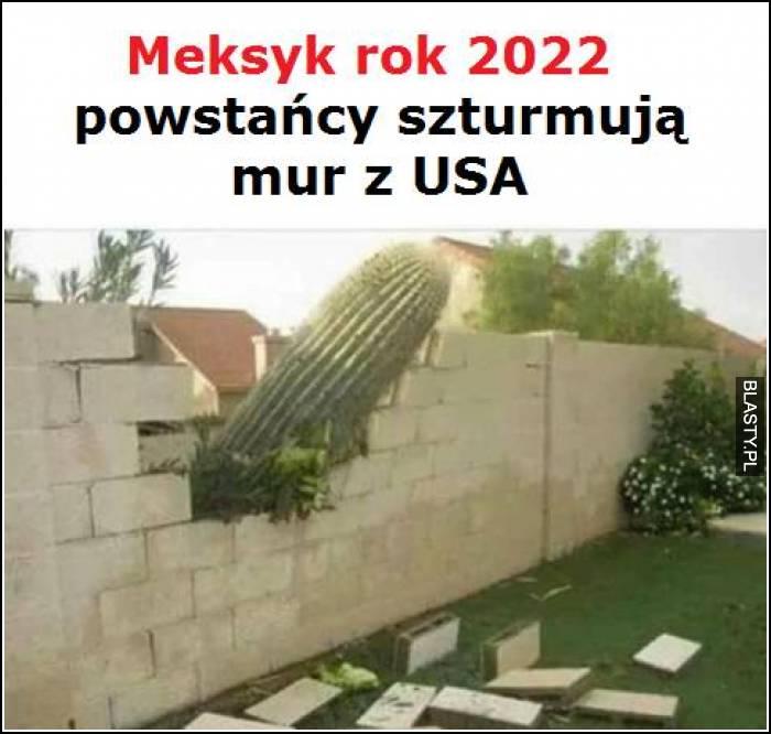 Meksyk Rok 2022 powstańcy szturmują mur z USA