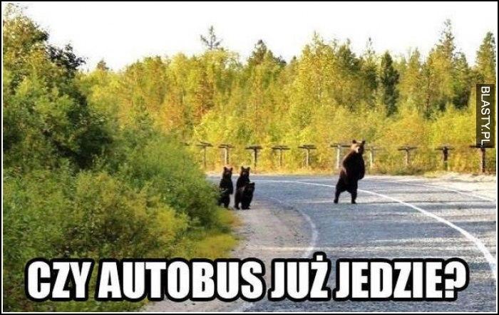 czy autobus już jedzie ?