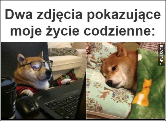 dwa zdjęcia pokazujące moje życie codzienne