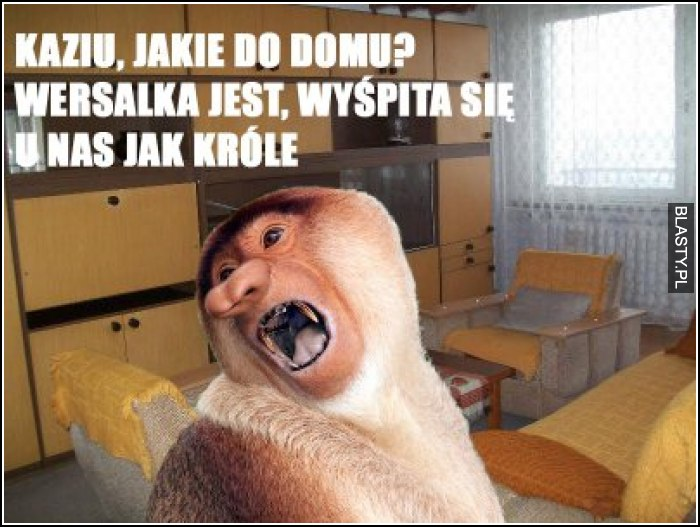 Kaziu, jakie do domu