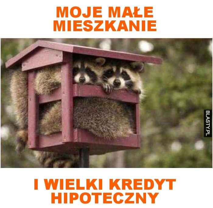 moje małe mieszkanie i wielki kredyt hipoteczny