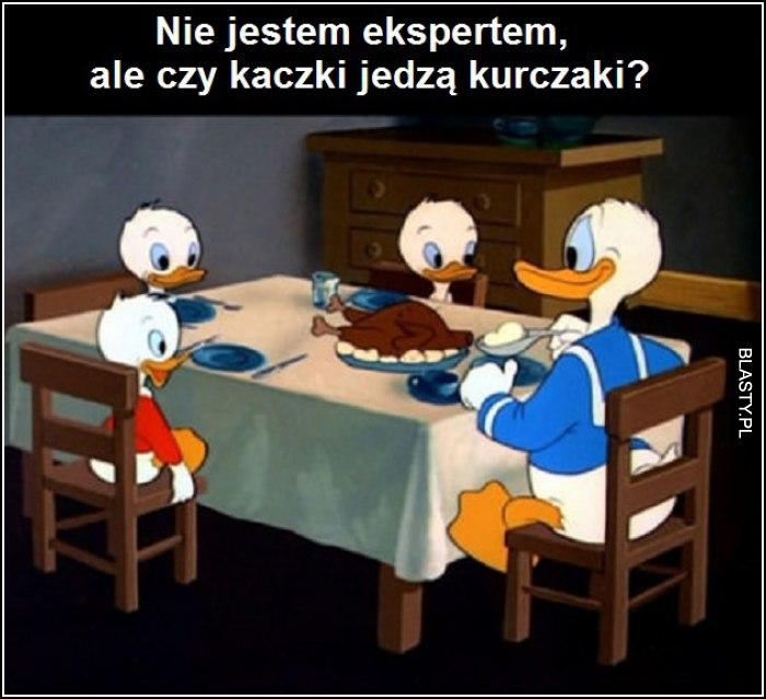 nie jestem ekspertem, ale czy kaczki jedzą kurczaki