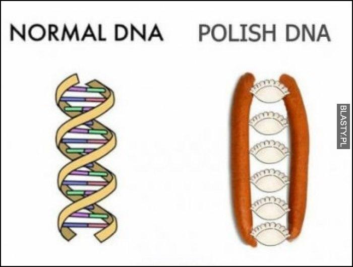Normal DNA vs polish dna