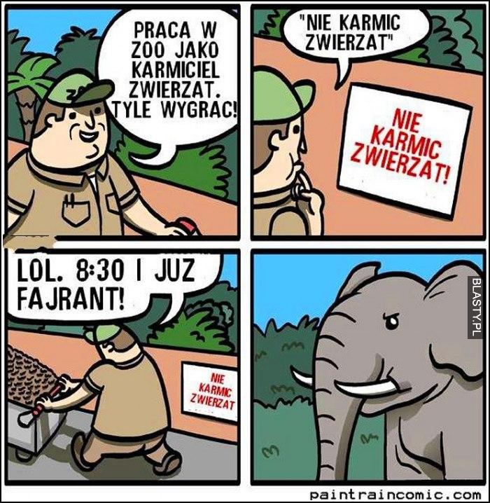 Praca w zoo jako karmiciel