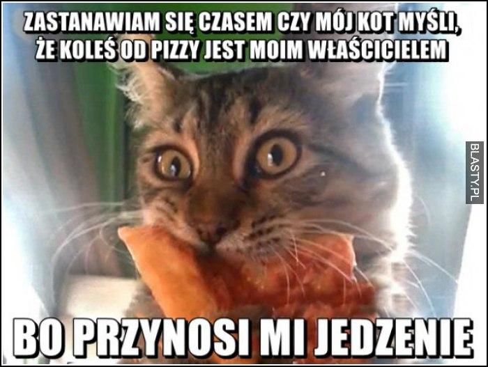 zastanawiam się czy czasem mój kot nie myśli, że koleś od pizzy jest moim właścielem