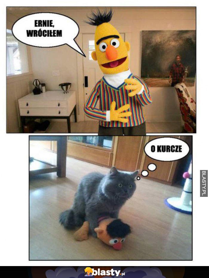 Ernie wróciłem do domu