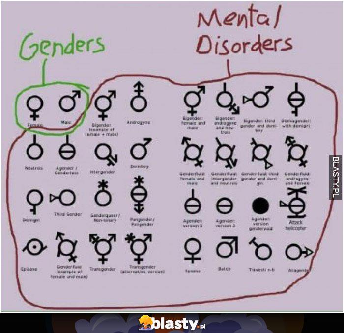 Genders vs pozostali