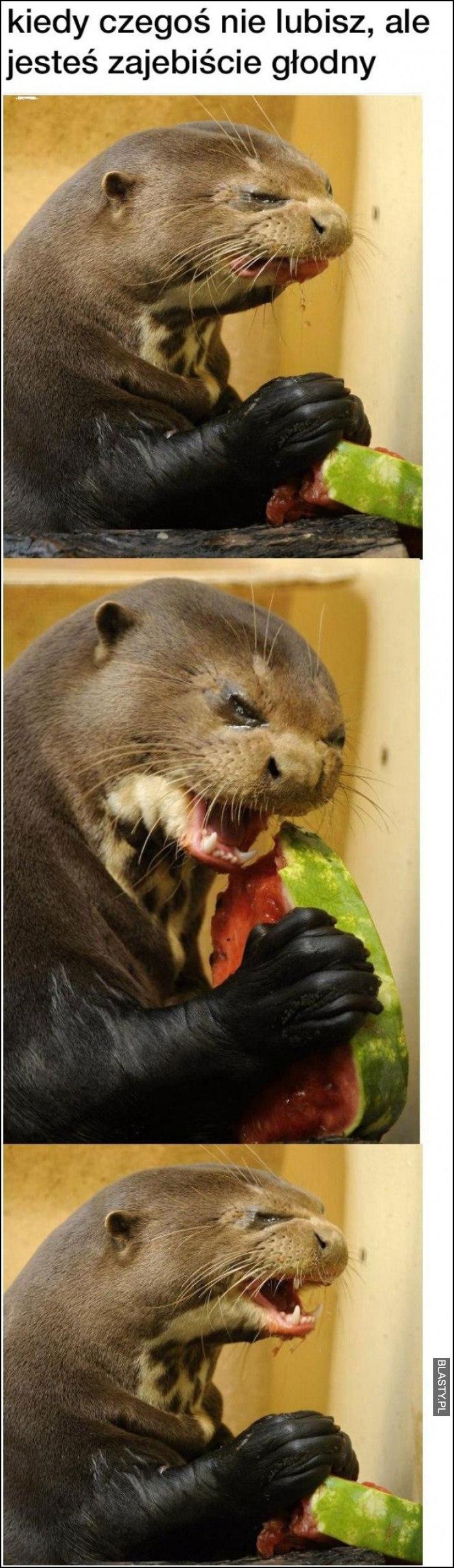 Kiedy jesteś bardzo głodny