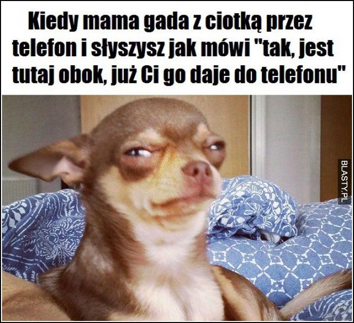 Kiedy mama gada z ciotką przez telefon