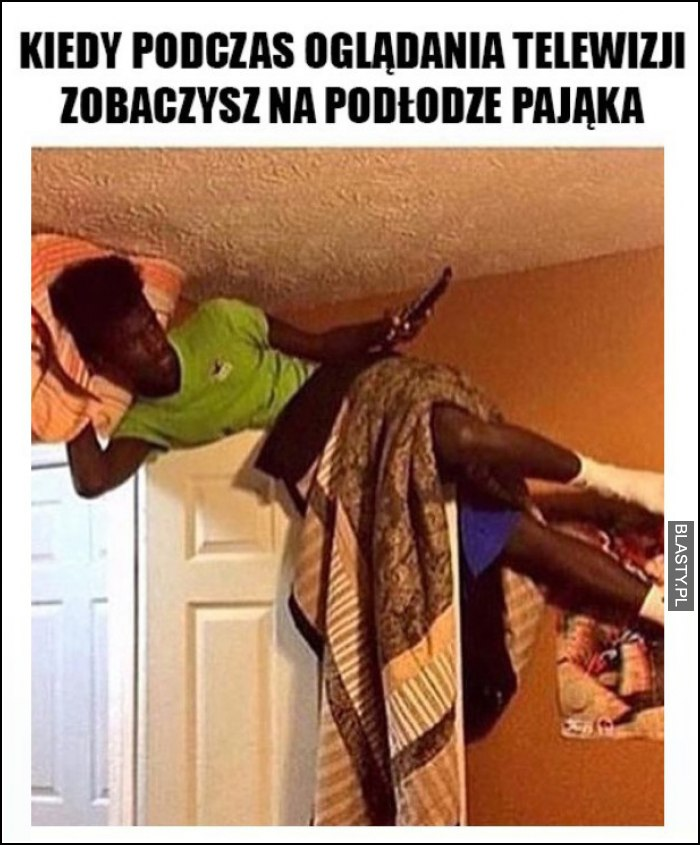 Kiedy w trakcie oglądania telewizji zobaczysz na podłodze pająka