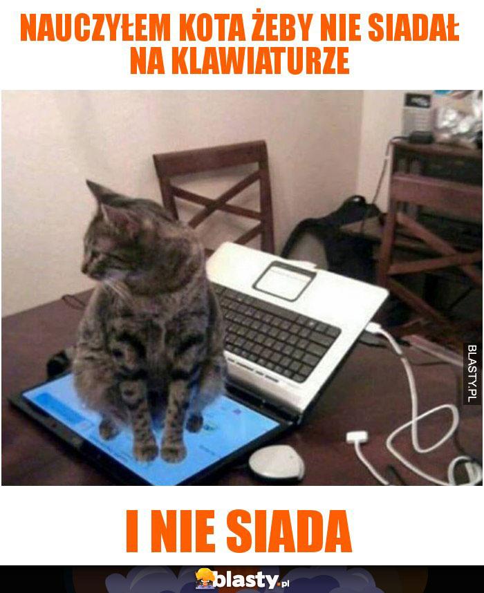 Nauczyłem kota żeby nie siadał na klawiaturze