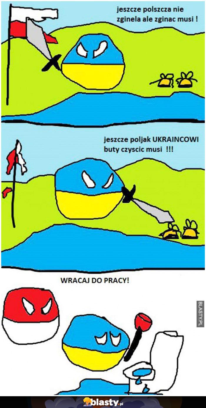 Poland ball ukraina