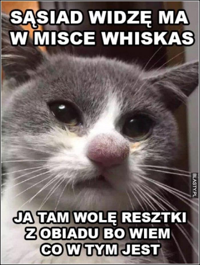 Sąsiad widzę ma w misce whiskas
