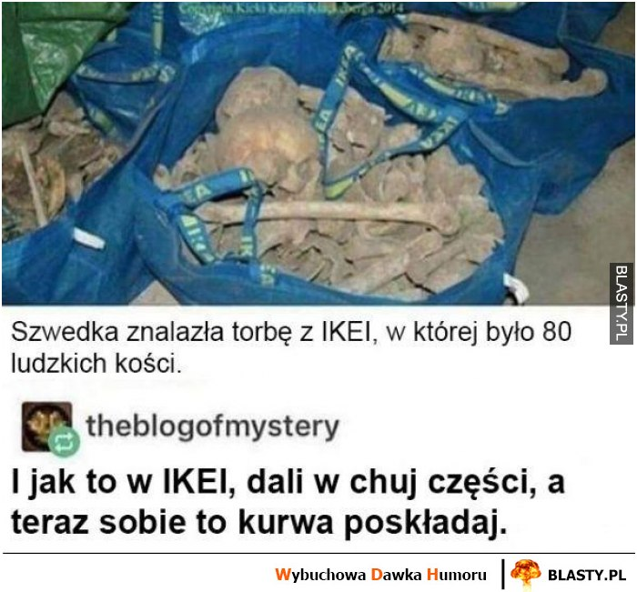 Szwedka znalazła torbę z IKEA w której było 80 ludzkich kości