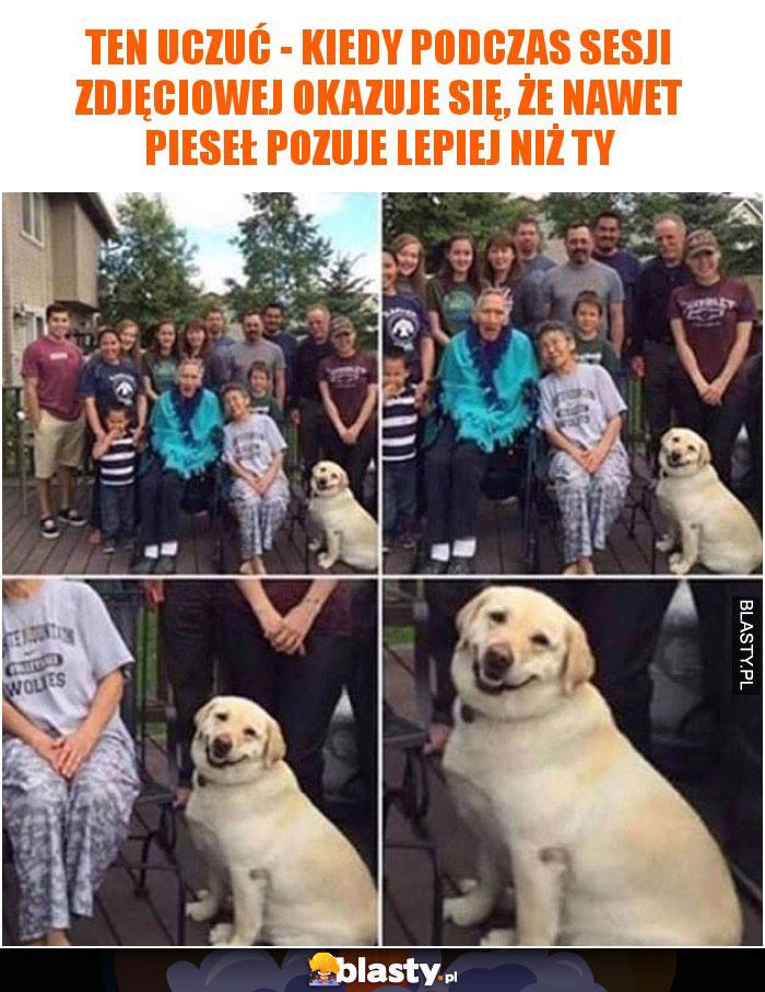 Ten uczuć - kiedy okazuje się, że nawet pies pozuje lepiej niż Ty
