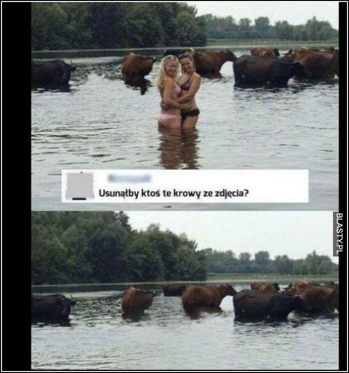 Usunąłby ktoś te krowy z tego zdjęcia
