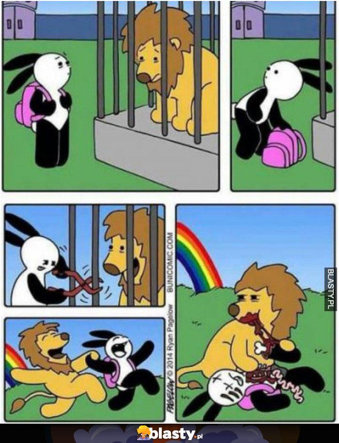 Zabawa z lwem