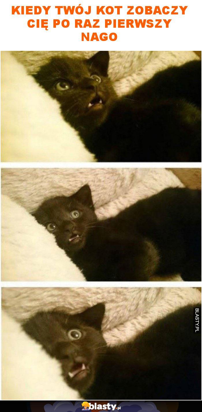 Kiedy twój kot zobaczy cię po raz pierwszy nago