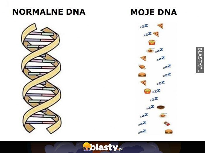 Normalne DNA vs Moje DNA