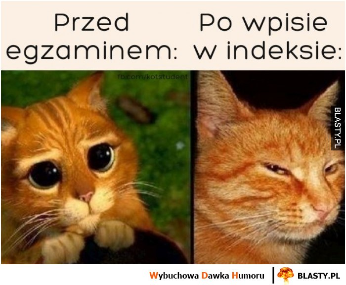 Przed egzaminem vs w indeksie