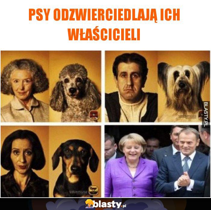 Psy odzwierciedlają ich właścicieli