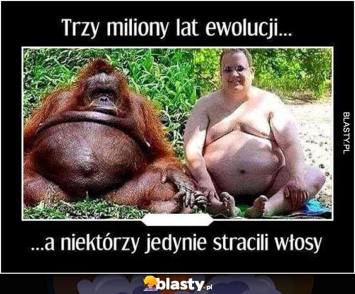 Trzy miliony lat ewolucji