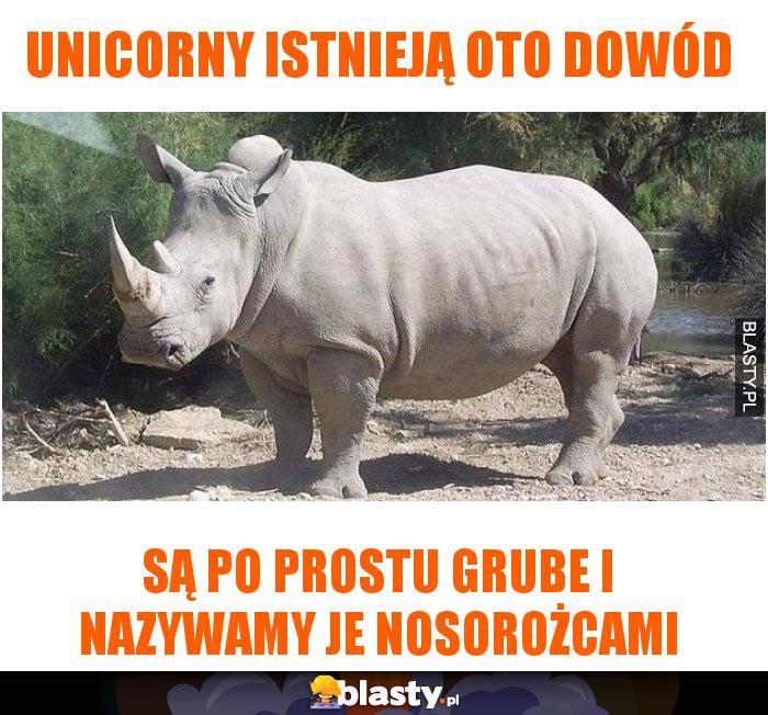 Unicorny istnieją