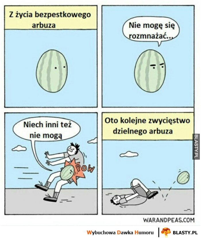 Z życia bezpestkowego arbuza