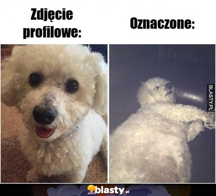 Zdjęcie profilowe vs oznaczone
