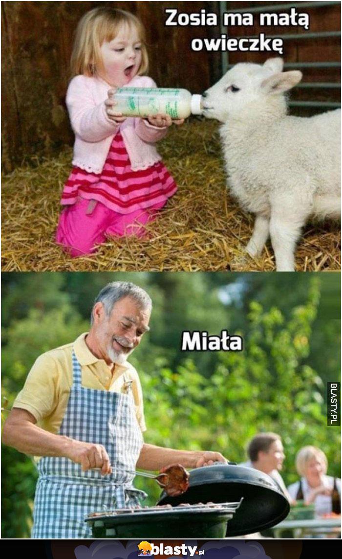 Zosia miała owieczkę