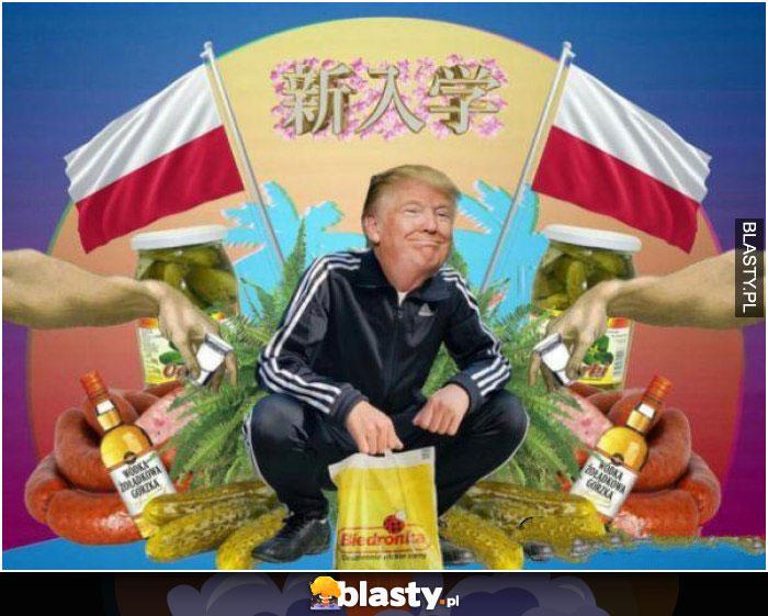Donald Trump polak