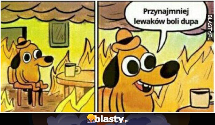 Kiedy polska się pali