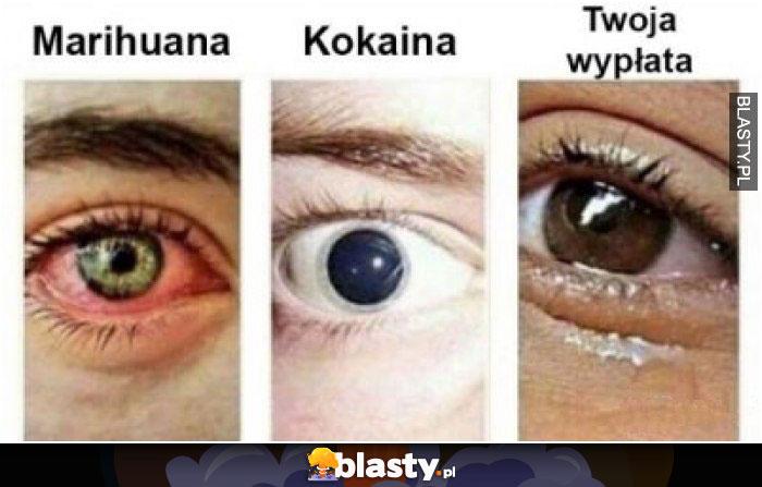 Marihuana vs kokaina vs twoja wypłata