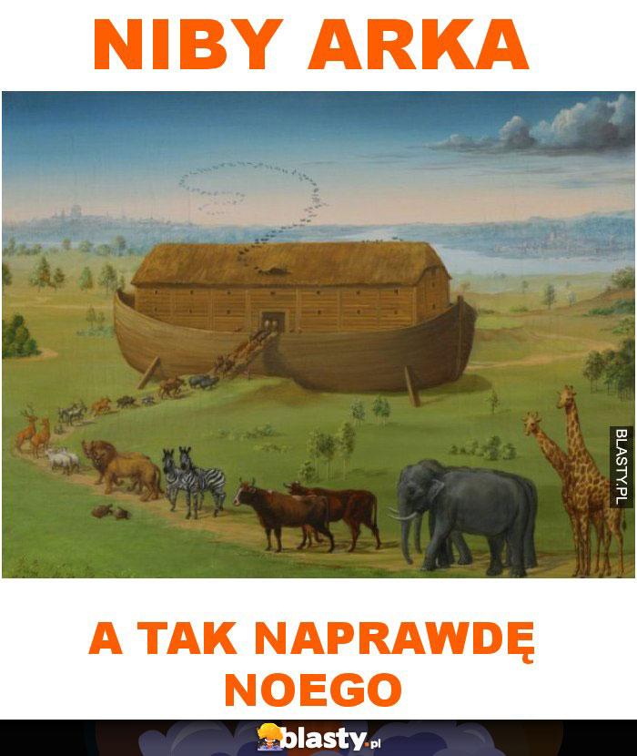 Niby Arka