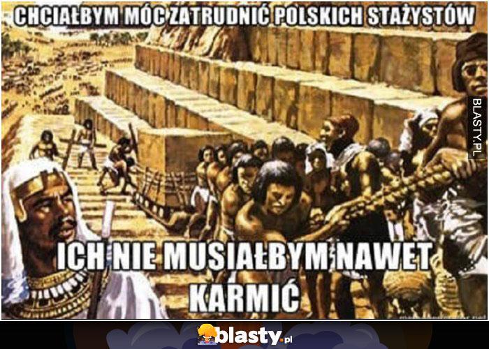 Chciałbym móc zatrudnić polskich stażystów