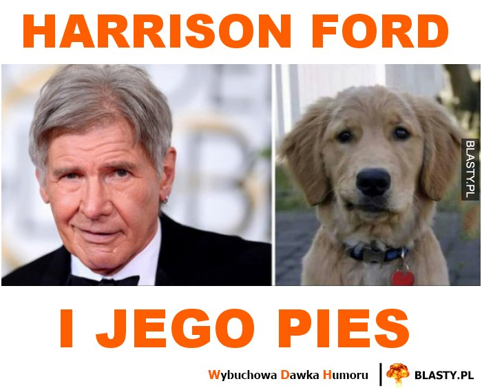 Harrison ford i jego pies