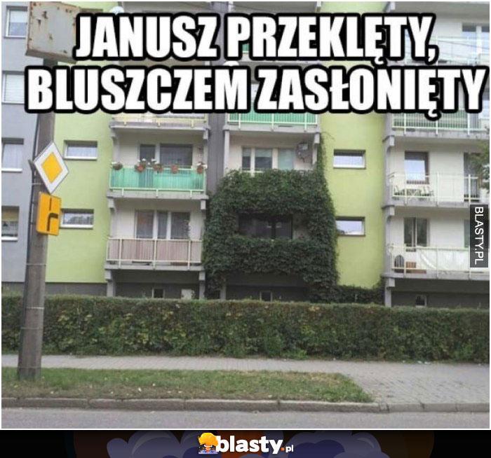 Janusz przeklęty bluszczem zasłonięty